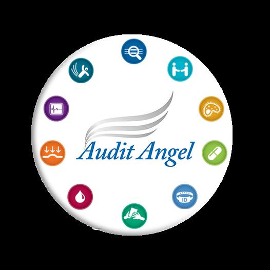 Audit Angel - Value-Added Services