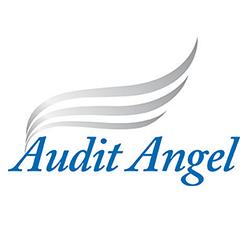 Audit Angel